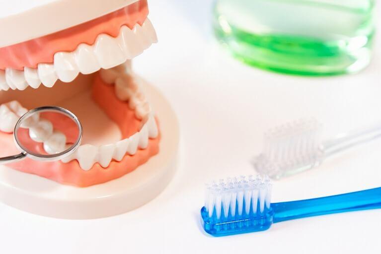 歯みがきだけではむし歯・歯周病は予防できません